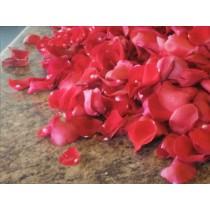 Rose Petals Med Bag