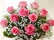 Valentine's Day LS Dozen Pink Roses Hand-tied