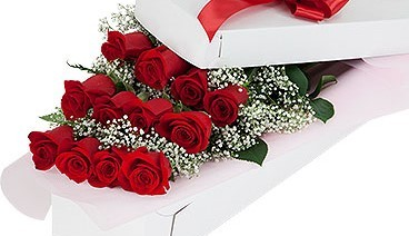 Valentine's Day LS Dozen Red Roses Boxed
