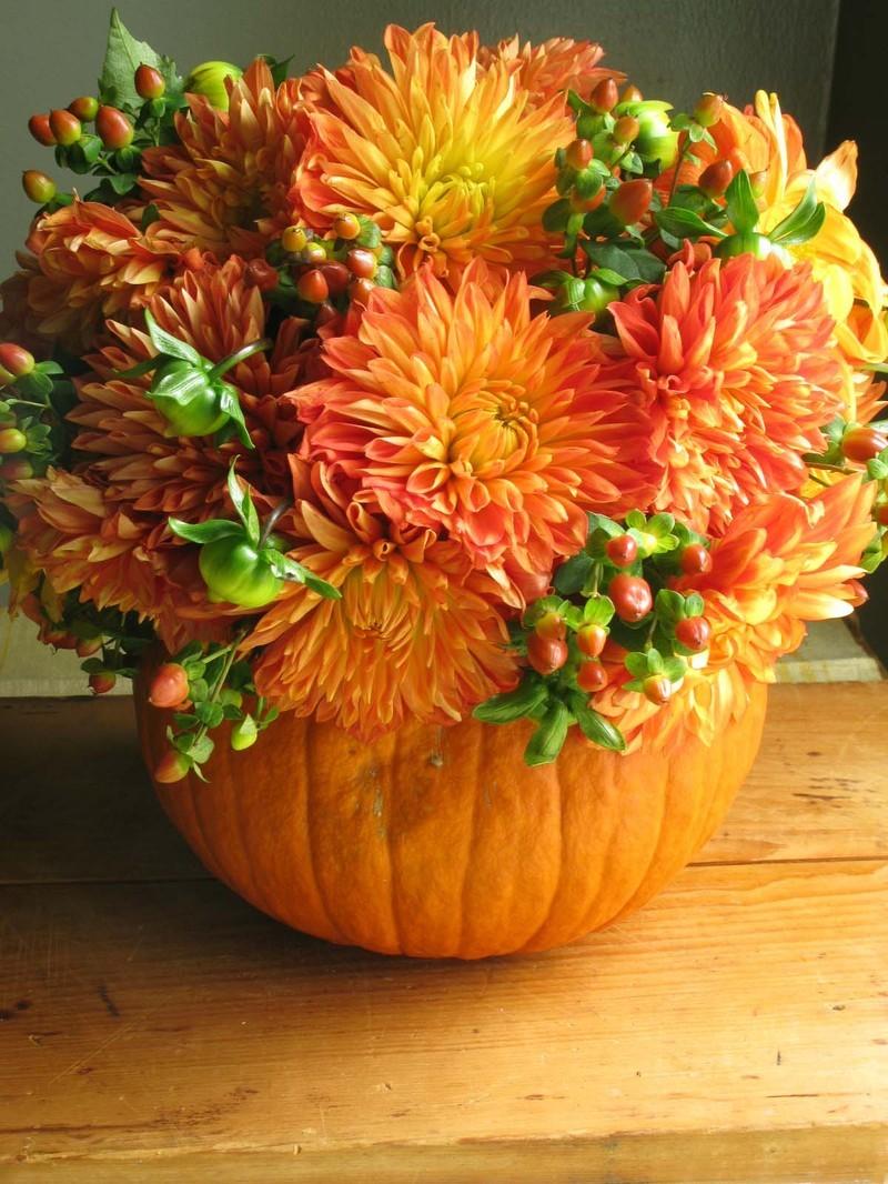 Pumpkin Fun 1