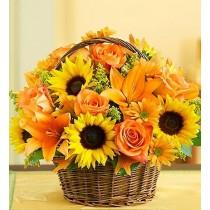 Sunflower Sunshine Basket