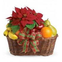 Fruit & Pot Xmas Basket